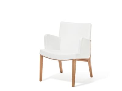 Lounge křeslo Moritz
